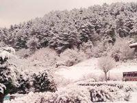 Вилно селище Планински кът