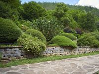 Къща за гости Робин Худ