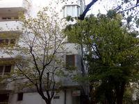 Апартамент Меги