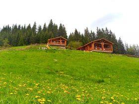 Къщи под наем Роженски поляни