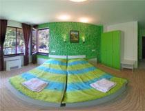 Зелена стая